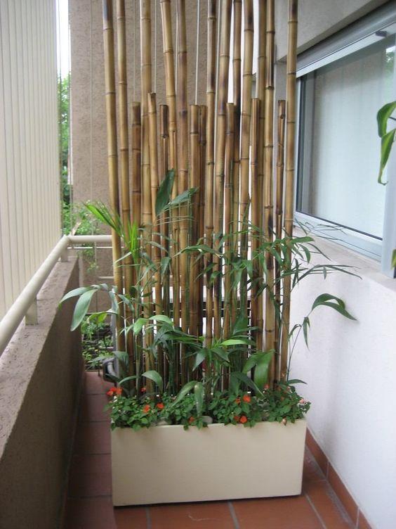 Bambusstangen bilden eine Sichtschutzwand #balkonideen