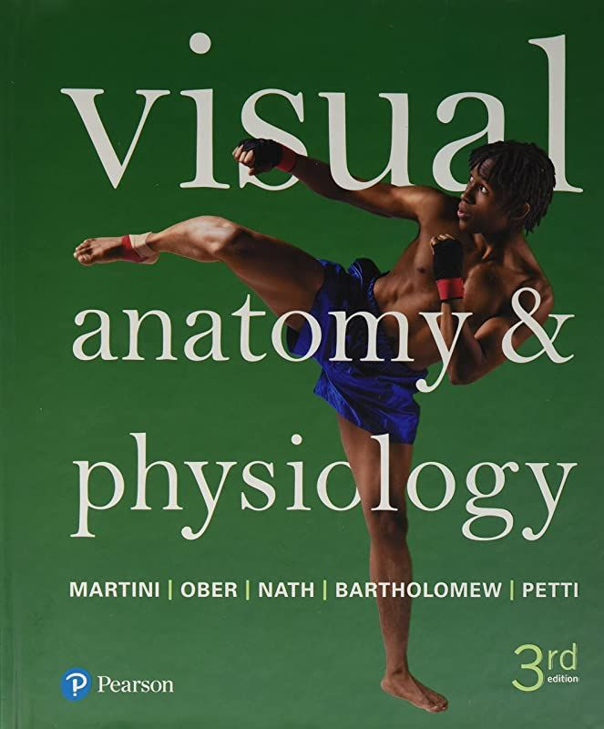 Download Visual Anatomy Physiology 3rd Edition By Visual Anatomy Physiology 3rd Edition Anatomy And Physiology Physiology Anatomy