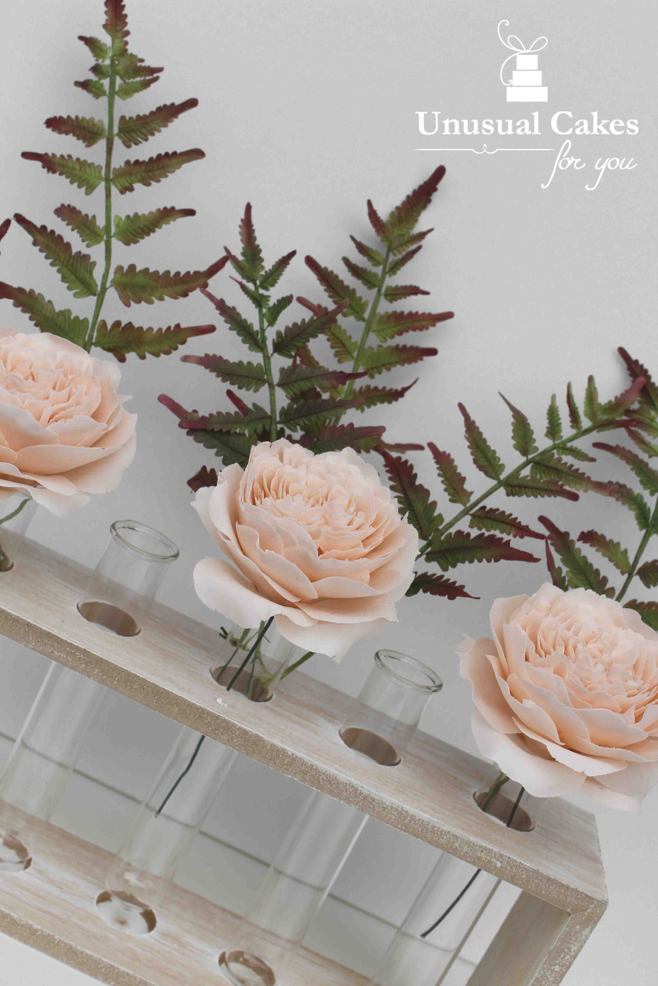 Learn how to make beautiful realistic gumpaste fern this tutorial learn how to make beautiful realistic gumpaste fern this tutorial is extremely comprehensive so great for the beginner or the advanced izmirmasajfo