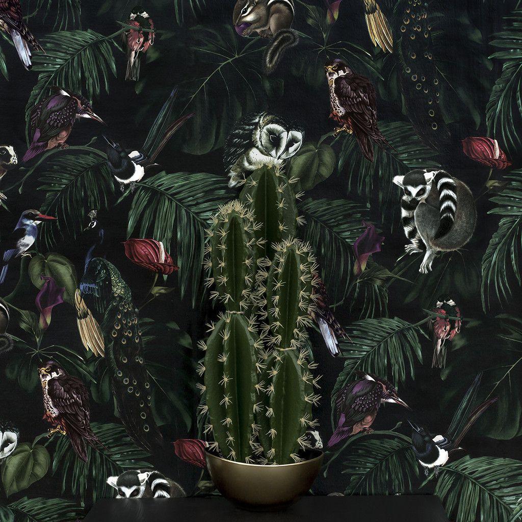 Amazonia Dark Wallpaper