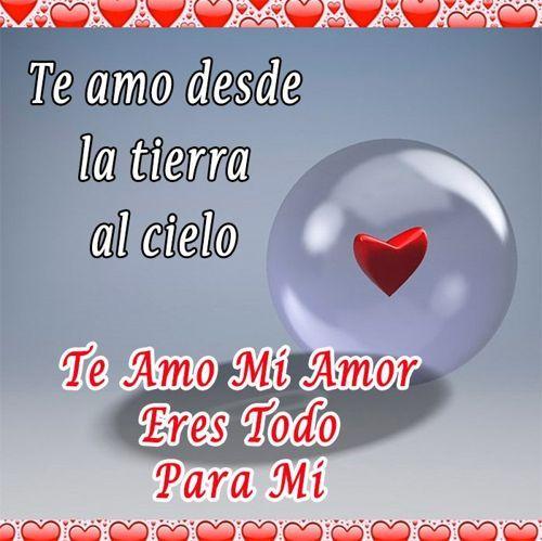 Imagenes De Eres Todo Para Mi Te Amo Feliz Dia Mi Amor Imagenes De Te Amo Te Amo Mi Amor