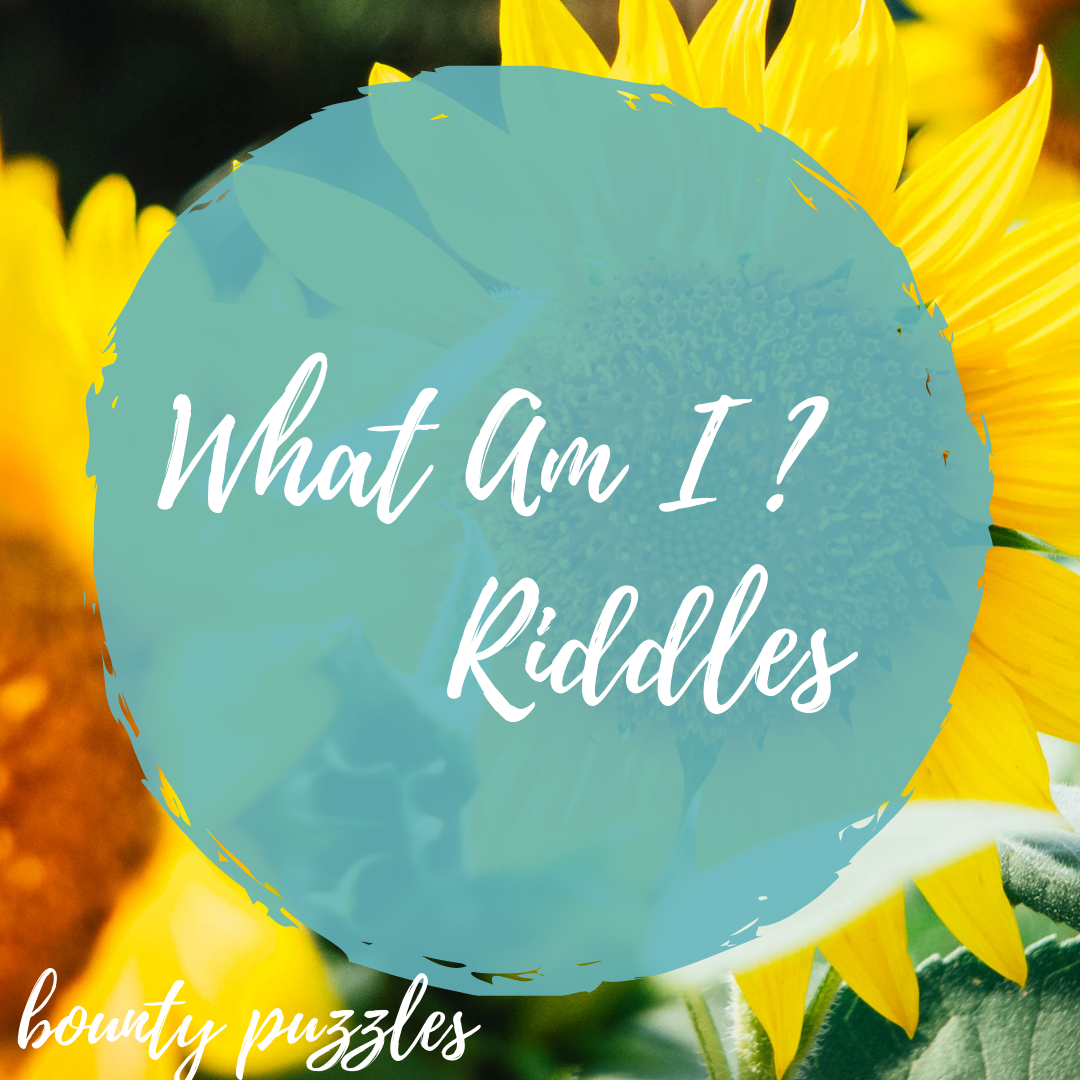 Ridles Bounty puzzles. Best Riddles with Answers Fun