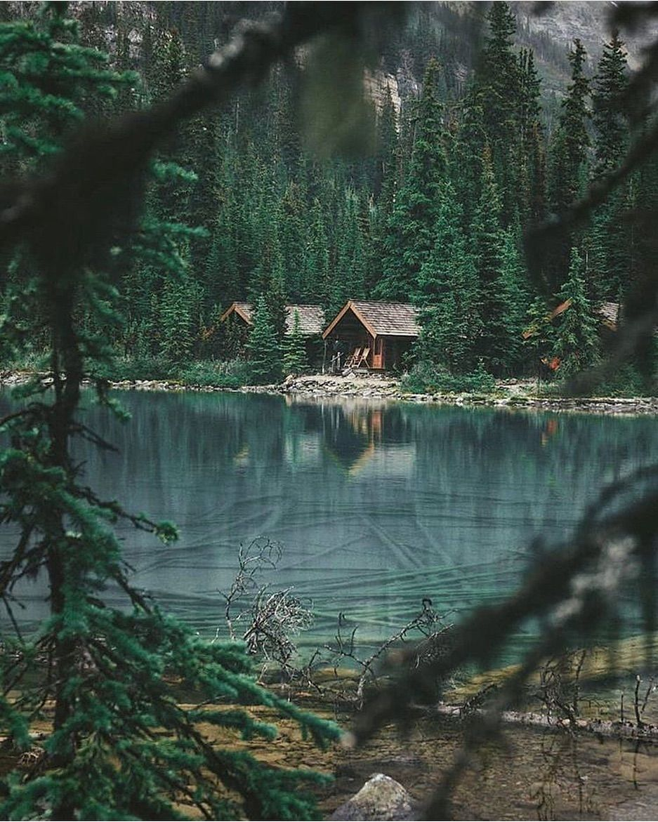 This Little Cabin Deep In The Mountain Forest Looks Like An Amazing Place To Relax And Reconnect With Nature Can You Guess W Scenery Nature House In The Woods