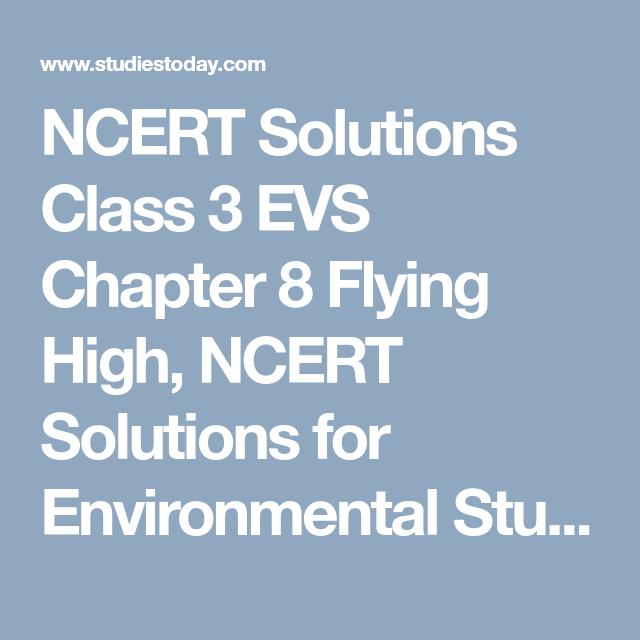 NCERT Solutions Class 3 EVS Chapter 8 Flying High, NCERT