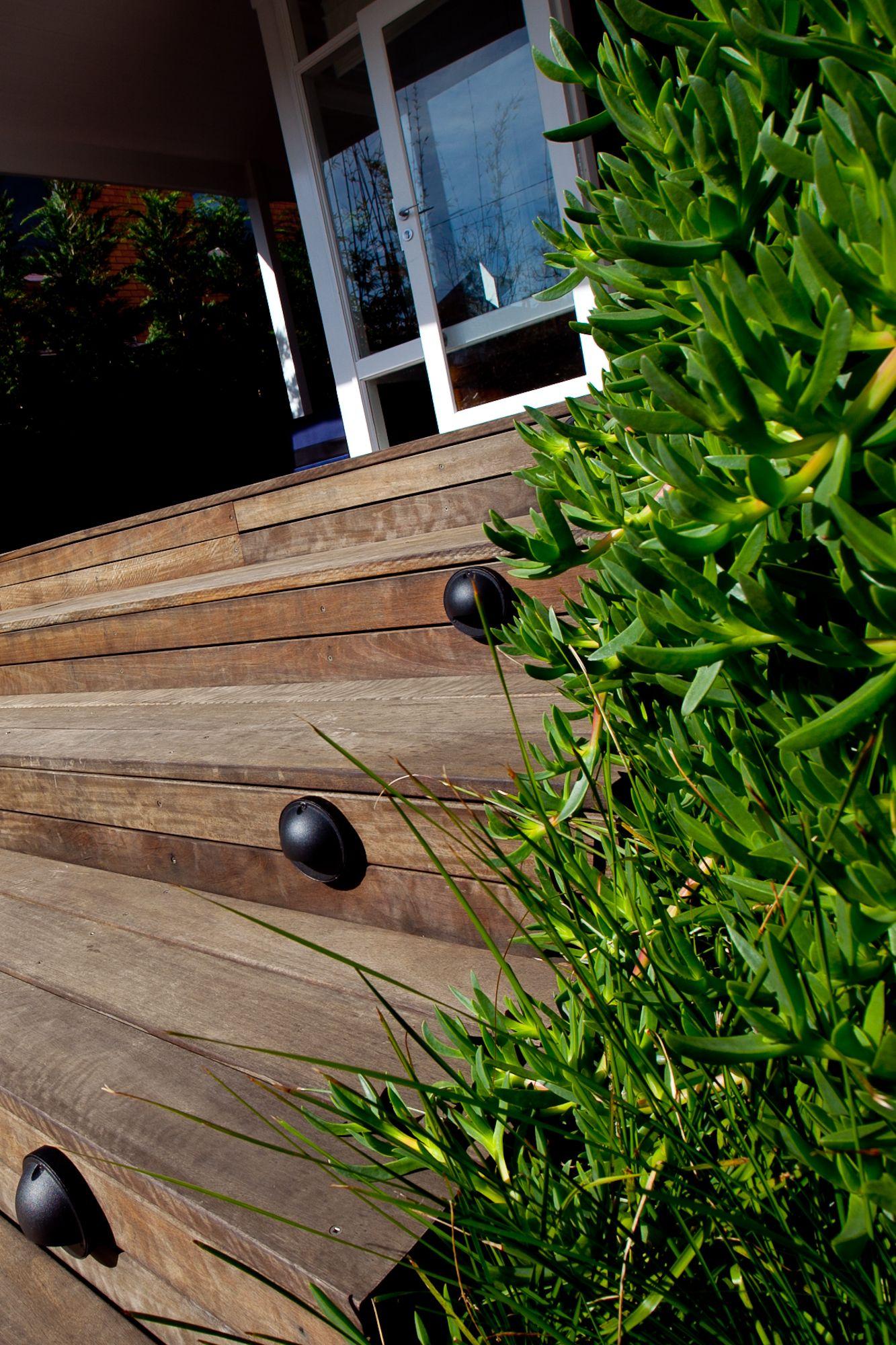 Australian hardwood decking with carpobrotus glaucescens for Australian hardwood decking