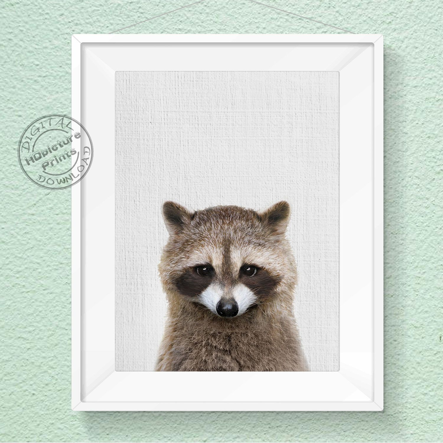 Excited To Share The Latest Addition To My Etsy Shop Raccoon Print Baby Animal Woodland Anim Woodland Animal Wall Art Animal Wall Art Nursery Animal Wall Art