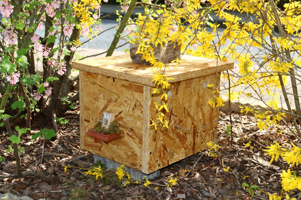 das fertige hummelhaus im garten hummelhaus hummelburg pinterest g rten bienen und. Black Bedroom Furniture Sets. Home Design Ideas