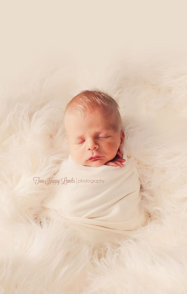 Two happy lambs newborn photography central coast california neutral studio baby mother cream fur