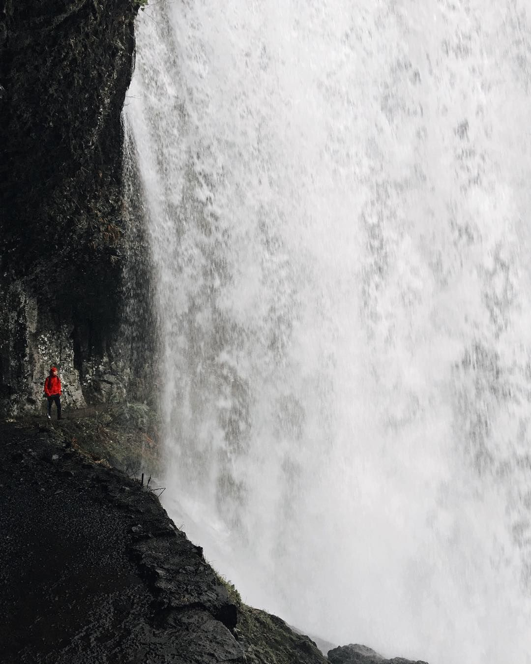 """""""Dante bought a new rain jacket in Portland. It came in handy at Silver Falls."""""""
