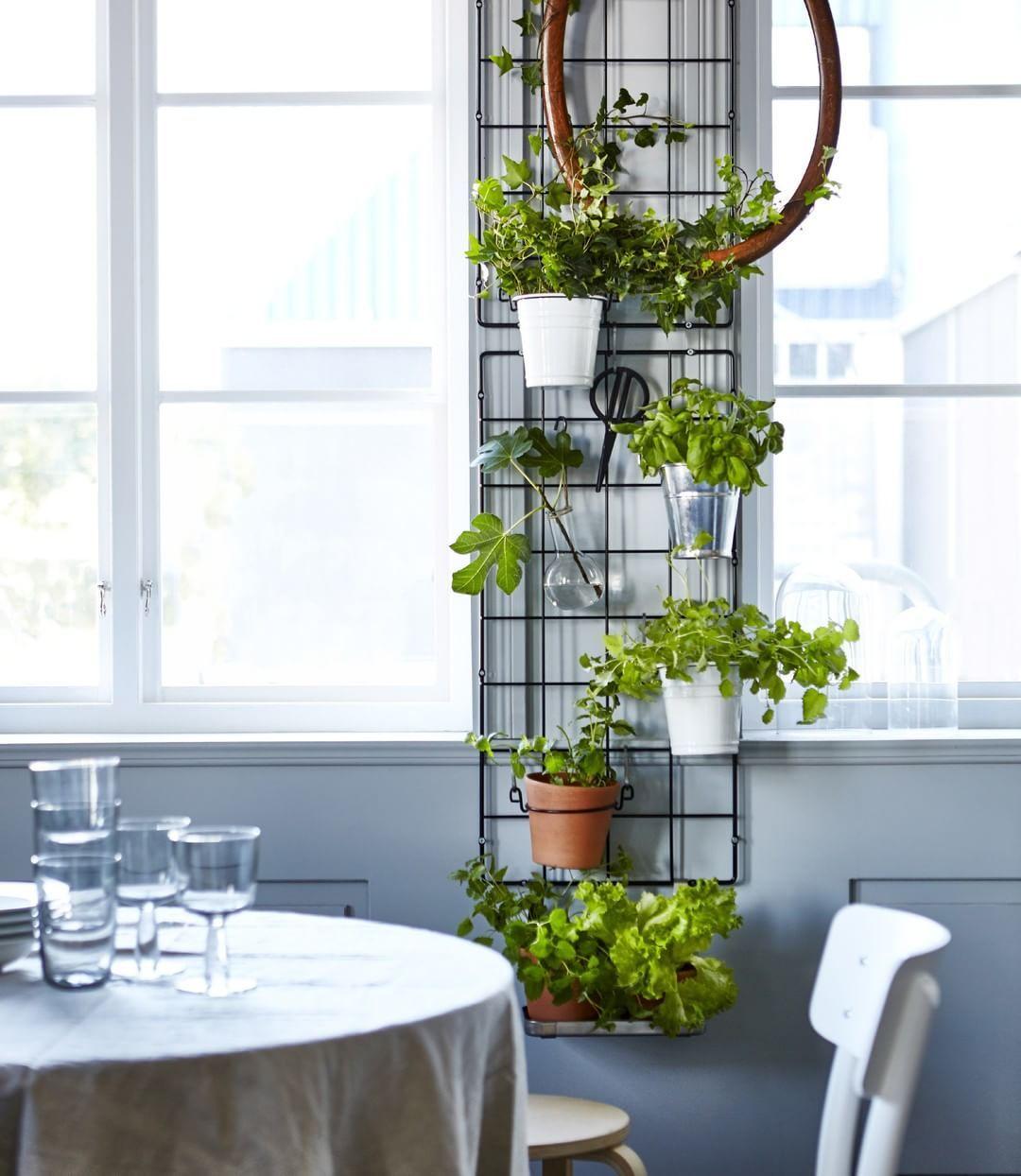 mur vegetal cuisine ikea