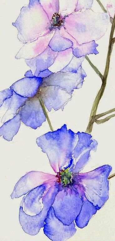 Watercolor Flower Flower Art Colorful Art