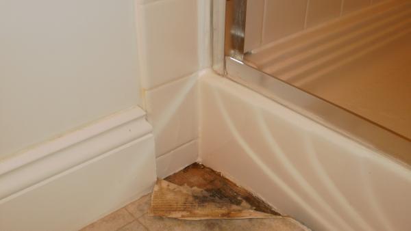 Get Great Leaking Showers In Blaxlands Ridge By Bennett S Leaking