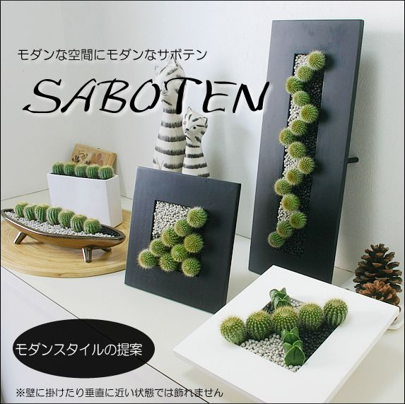 Rakuten: A houseplant interior modern cactus wave (white or black wave type) [easy ギフ _ Messe input] [message card free of charge] [stylish in modishness!]- Shopping Japanese products from Japan