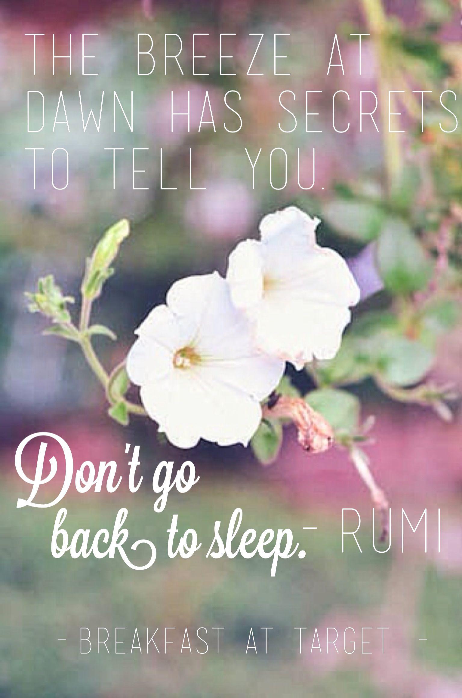 Don't go back to sleep