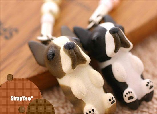 Adopt Lolli On Pitbull Terrier Terrier Mix Dogs Adoption