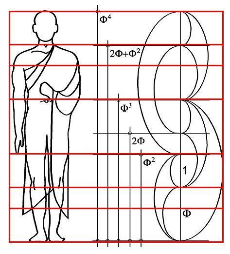 formas del cuerpo masculino caracteristicas - Buscar con Google