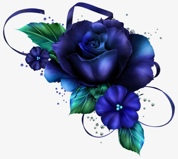 Beautiful Blue Roses Pretty Blue Rose Png Transparent Clipart Image And Psd File For Free Download Flower Art Blue Roses Wallpaper Blue Roses