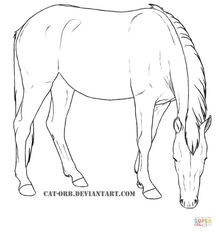 Mustang Mare Super Coloring Pictures To Color