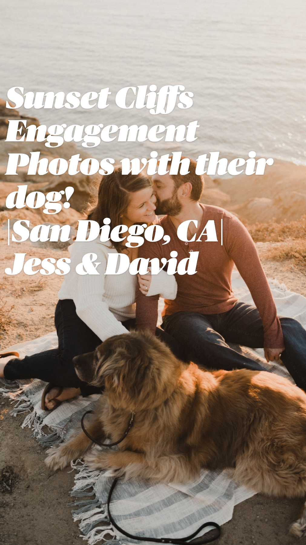 Sunset Cliffs Engagement Photos with their dog! |San Diego, CA| Jess & David