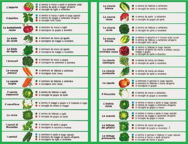 Calendario semina orto pinterest gardens gardening - Calendario semina fiori ...
