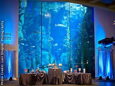 Aquarium Of The Pacific Long Beach California Wedding Venues