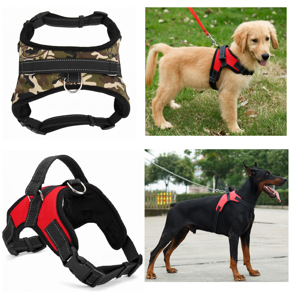 Dog Pet Harness in 2020 Padded dog harness, Small dog