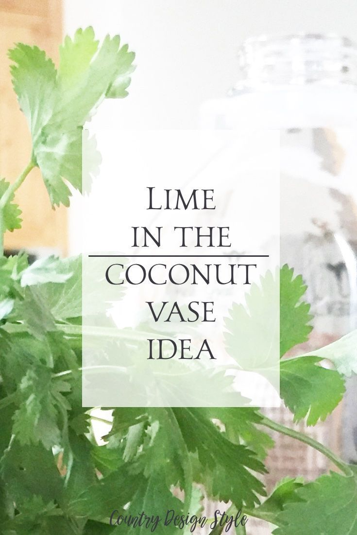 Put the lime in the coconutllar store vase diy wedding