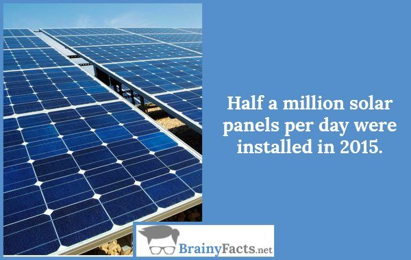 Random Facts Solar Panels Did You Know Solar Panels Solar Paneling
