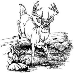 Jumping Deer Rubber Stamp