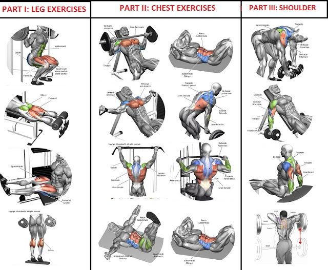 10 Sets Of Reps Workout Program For Quick Muscle Building