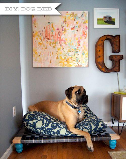 Diy Easy Dog Bed Diy Dog Bed Elevated Dog Bed Dog Bed