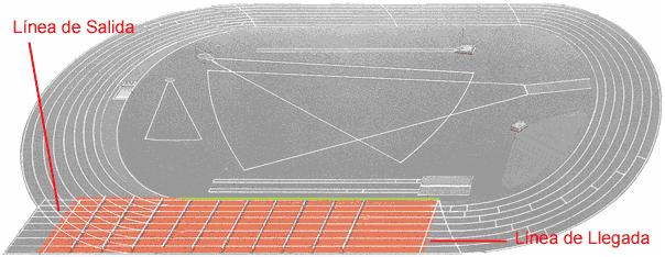 Pruebas Velocidad 100 Metros Lisos Carreras Atletismo Tafad Tafad Y Cursos Carreras Atletismo Atletismo 100 Metros