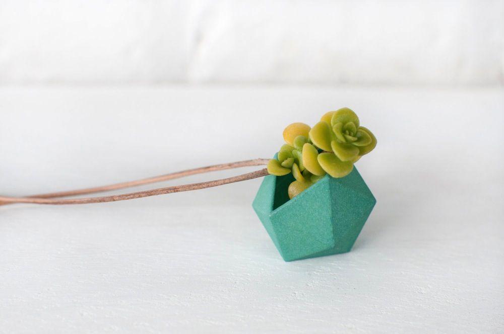 Collen Jordan crea accesorios con plantas - Antidepresivo