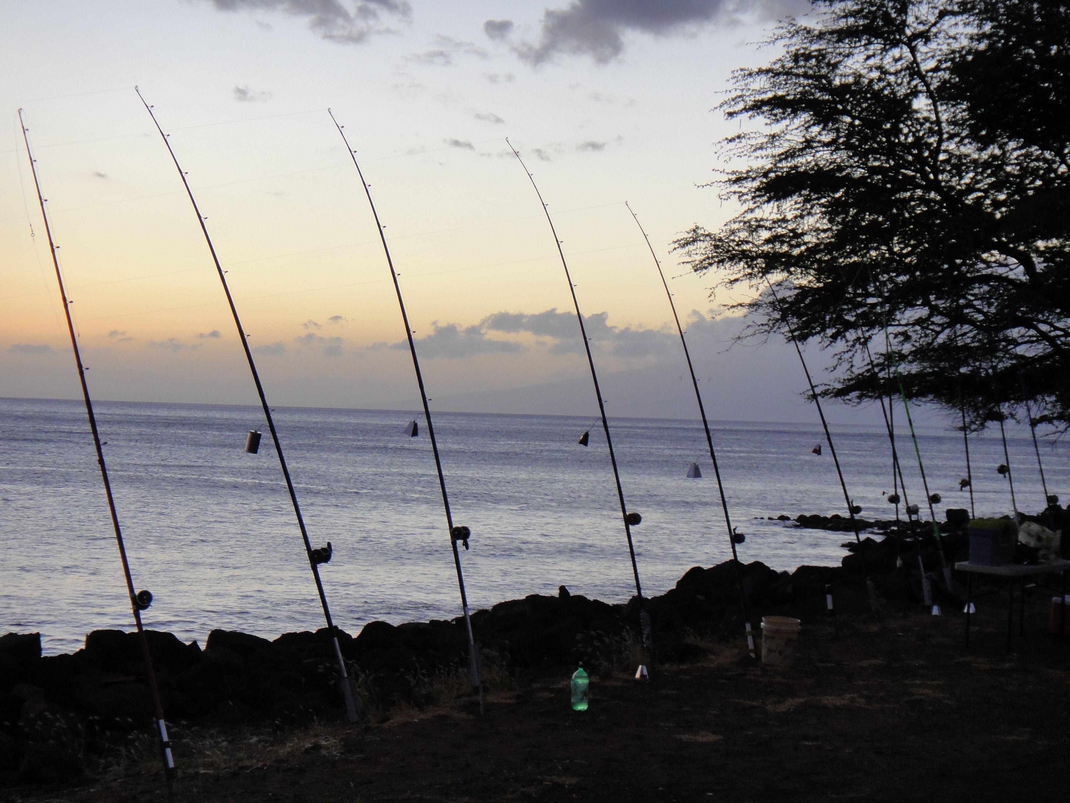 Ulua Fishing At Wahikuli Park In Lahaina The Ulua Fishermen Set Up Late In The Afternoons And Then Fish All Night Hawaii Fishing Fisherman Set Maui Hawaii