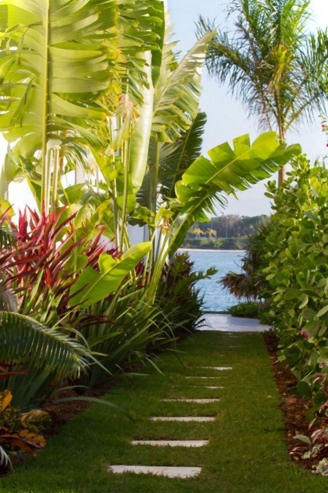 Walkway through tropical garden use as stepping stones for Tropical pool gardens