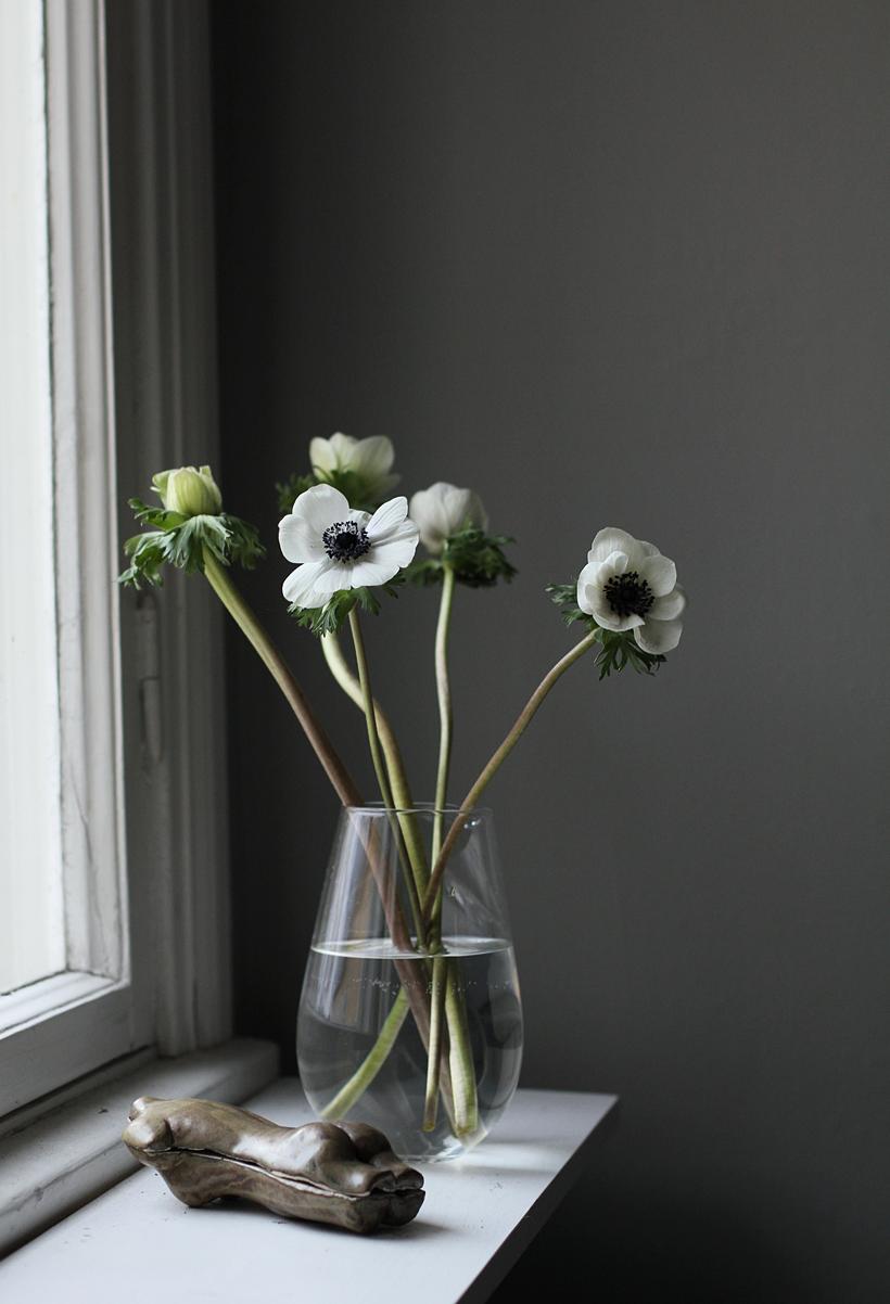 F L O W E R S White Anemone Decor Floral Arrangements Anemone