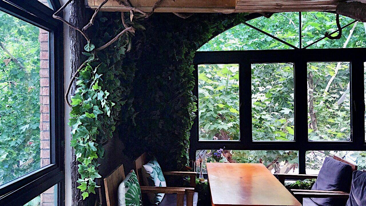 The best hidden cafés in Shanghai Themed cafes, Shanghai