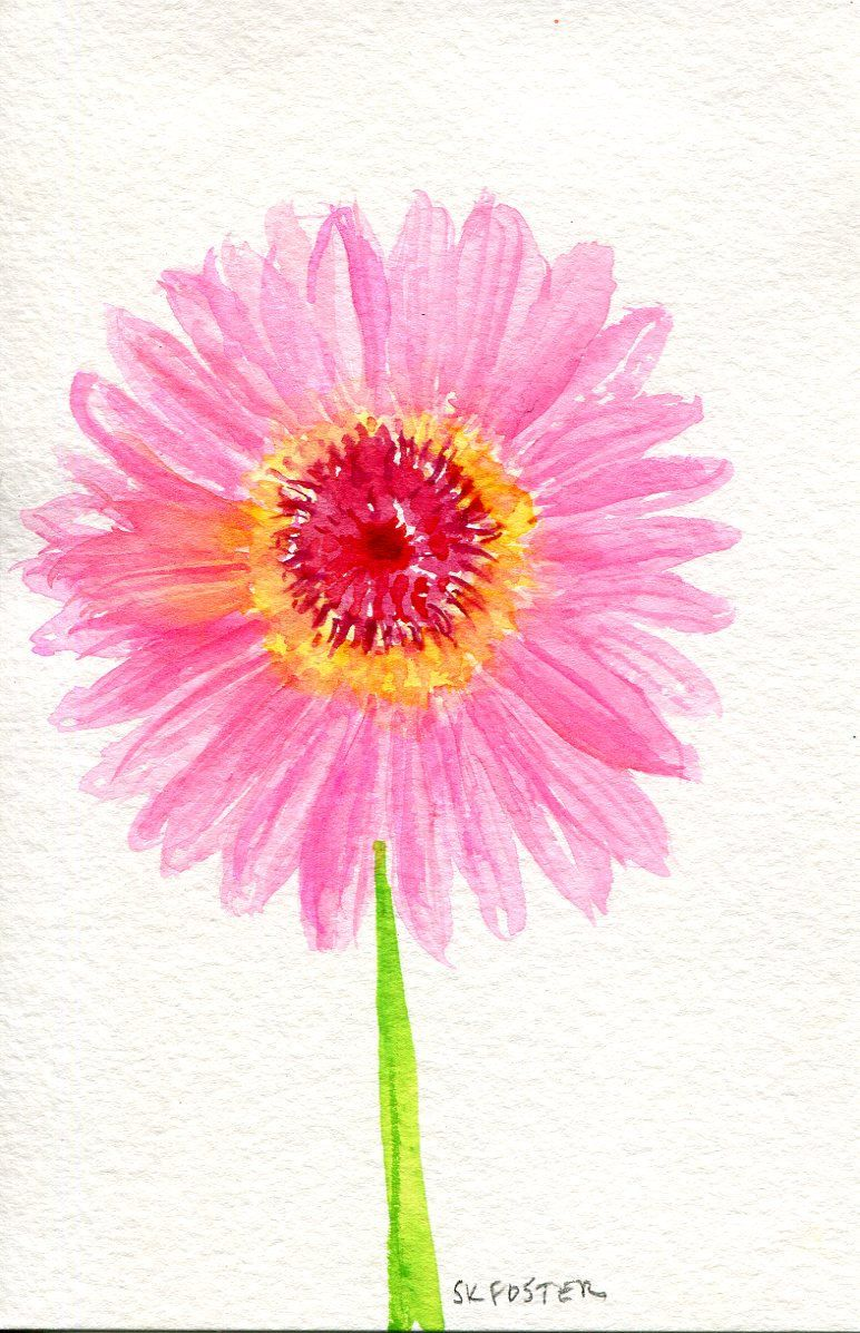 Gerbera Daisy Watercolors Painting Original Small Pink Floral