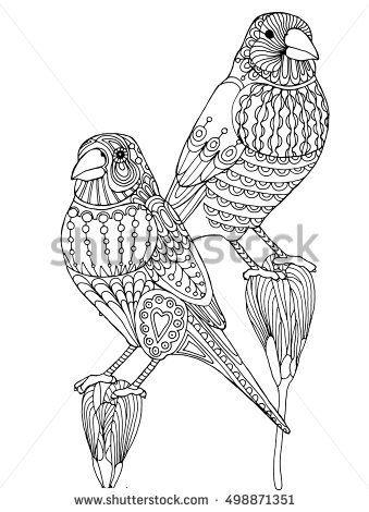 Modelada zentangle pinzón pájaro, página para colorear para adultos ...