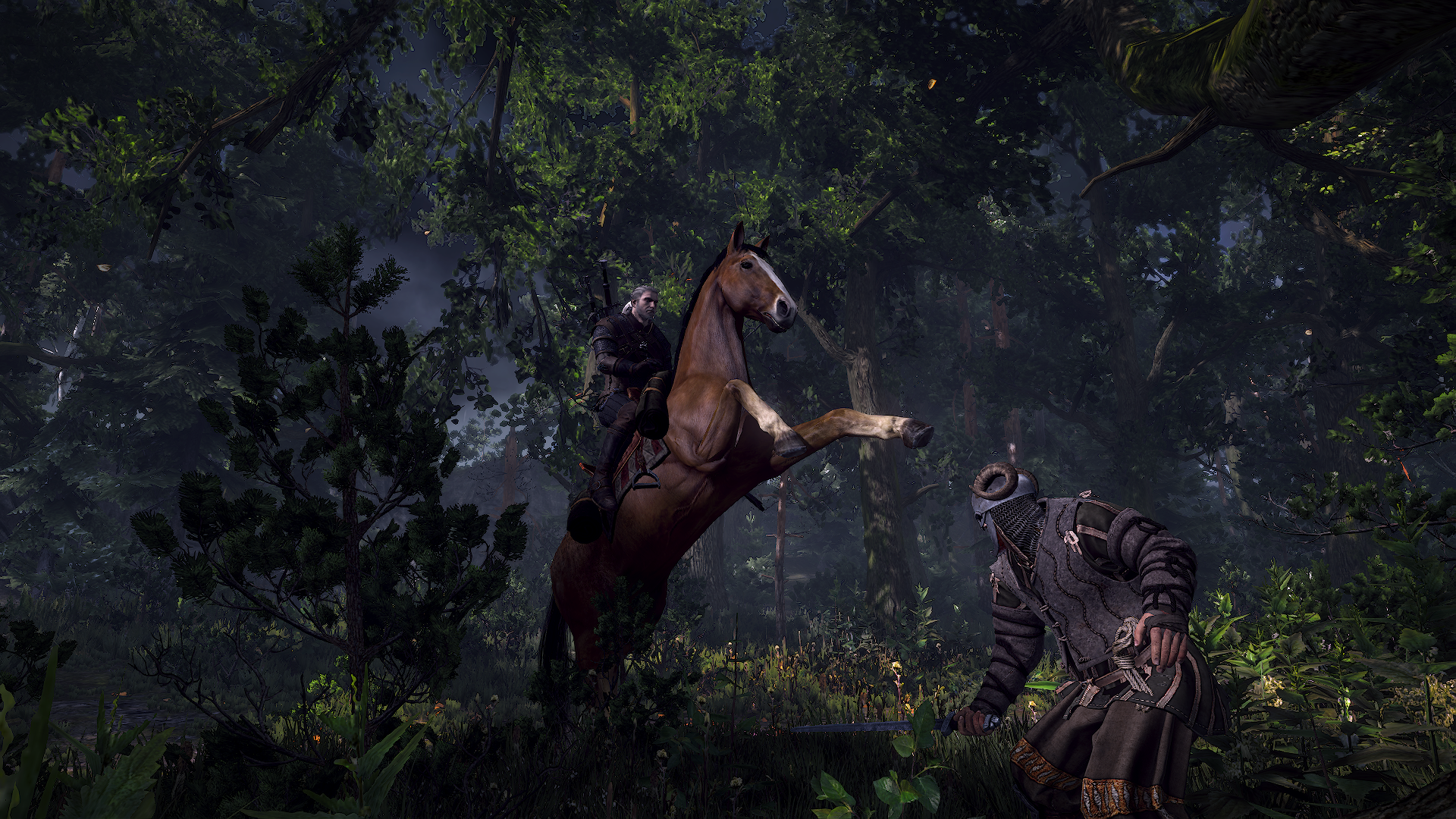 Screenshots The Witcher 3 Wiki Guide Ign The Witcher 3 The Witcher The Witcher Wild Hunt