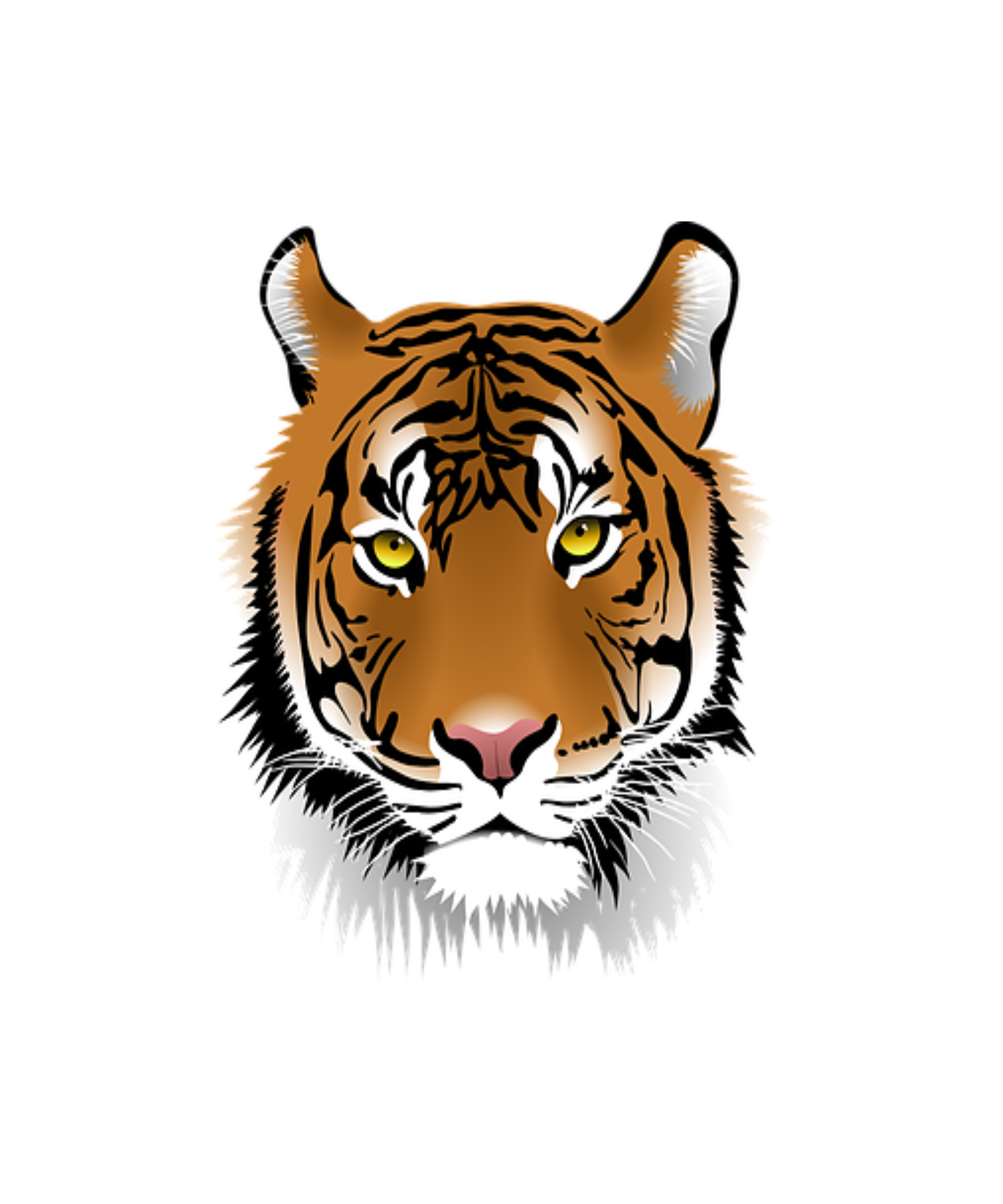 This Cute Bengal Tiger Is For All Animal Lovers Tiger Face Face Art Cartoon Tiger
