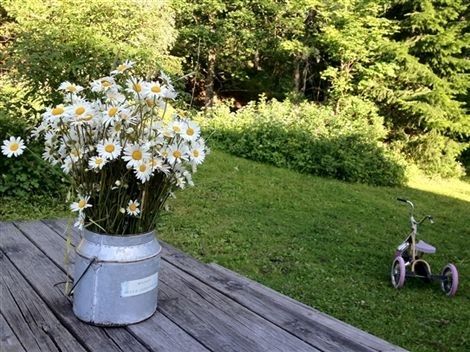 Kesä täynnä työtä – Kotivinkki