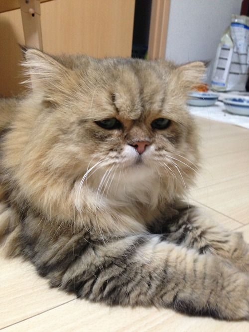 """Im seriously sad today"""