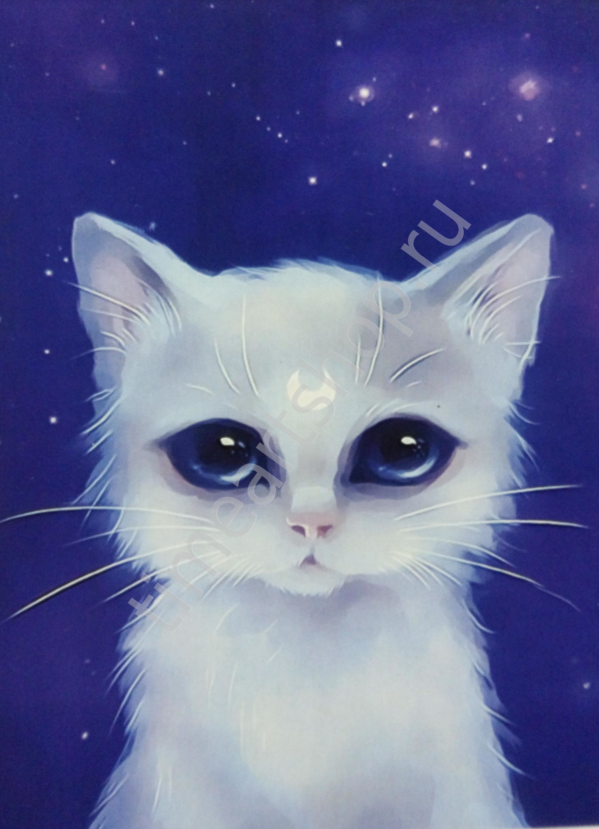 Белая кошка, картина раскраска по номерам для детей ...