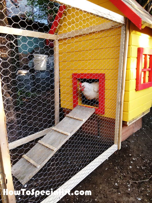 How to build an insulated chicken coop   Building a ...