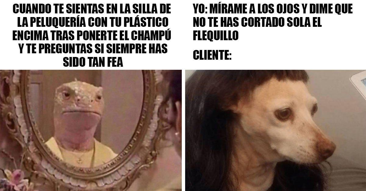 17 Memes Que Haran Llorar Y Carcajear A Tu Peluquera Al Mismo Tiempo Riendo A Carcajadas Memes De Disney Memes Espanol Graciosos