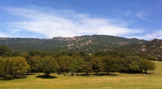 La zona de l'Osp�dale nell'Alta Rocca - corsicavivilaadesso.it #CorsicaVivilaAdesso