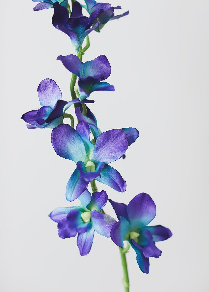 Silk Dendrobium Orchid In Purple And Blue 35 Tall Purple Orchids Purple Flower Tattoos Blue Flower Painting
