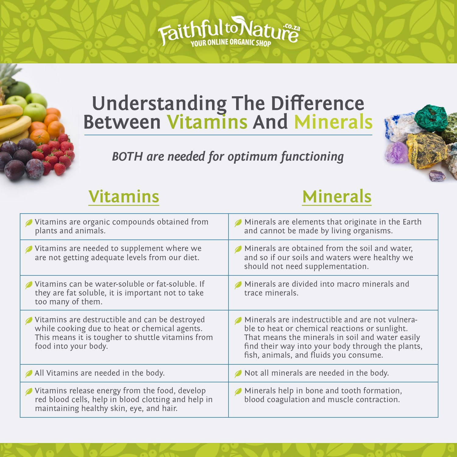 The Difference Between Vitamins And Minerals