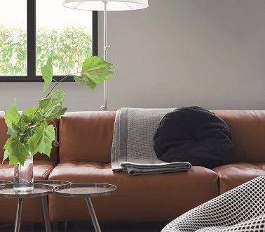 Une peinture couleur salon gris graphite pour une déco moderne chic et sobre cette teinte de peinture sublime le mobilier design